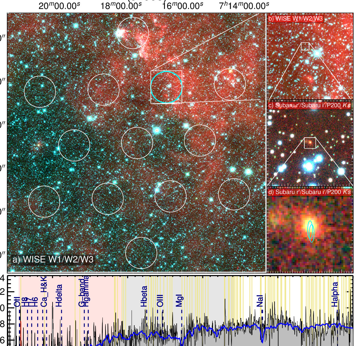 a-powerful-radio-source-in-a-distant-galaxy-emits-regular-signals-with-a-period-of-16-days-towards-the-earth