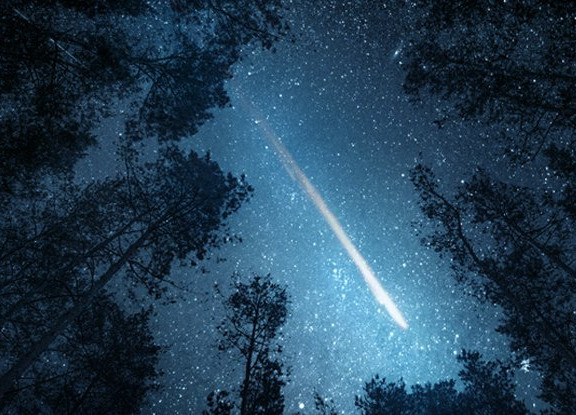 """the-first-""""extraterrestrial""""-protein-in-a-meteorite"""