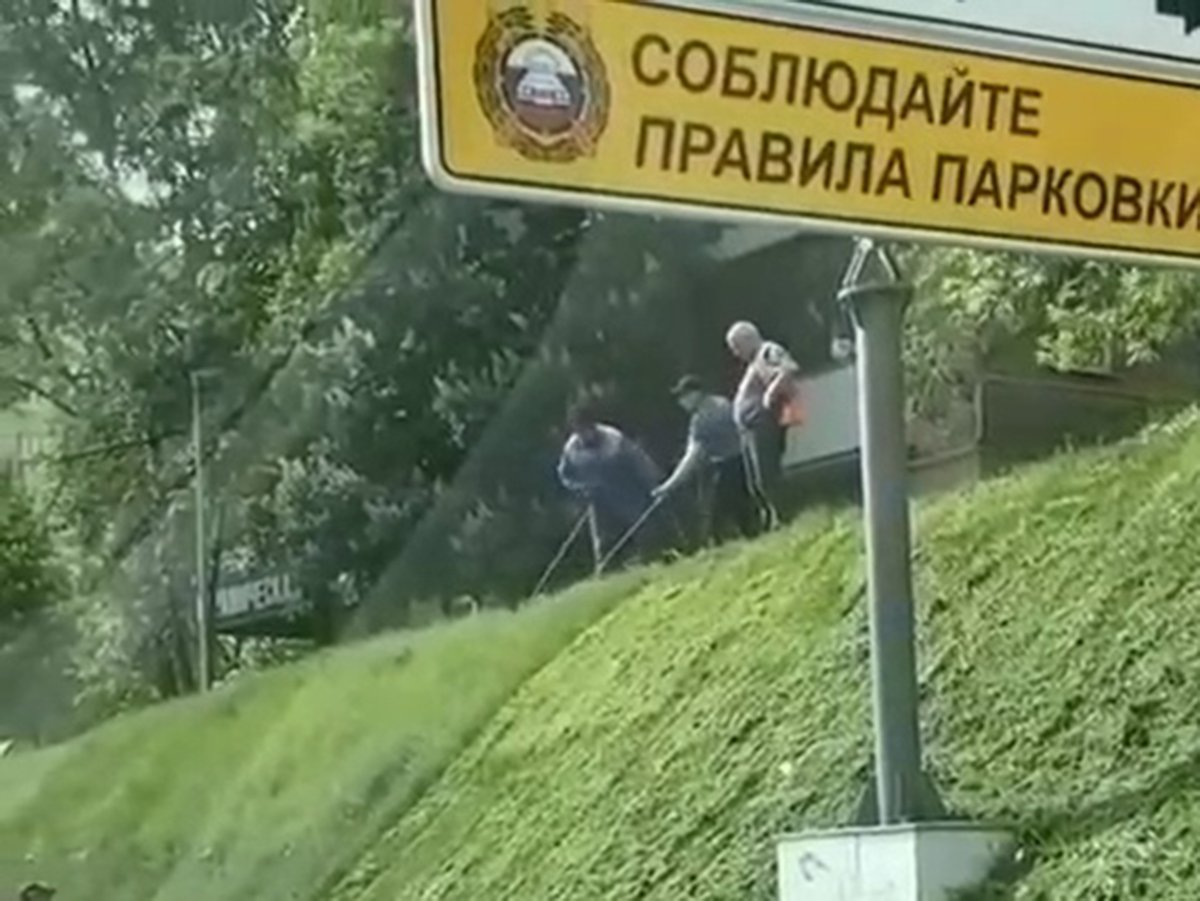method-of-treating-the-lawn-workers-in-moscow-amused-networks