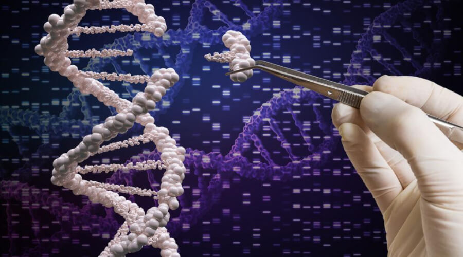 russia-embarks-on-the-path-of-human-genomic-research