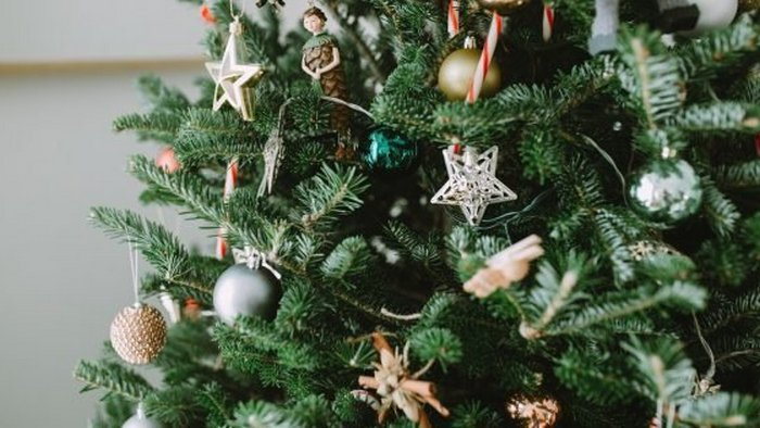 8 valuable tips on how to extend the life of your Christmas tree