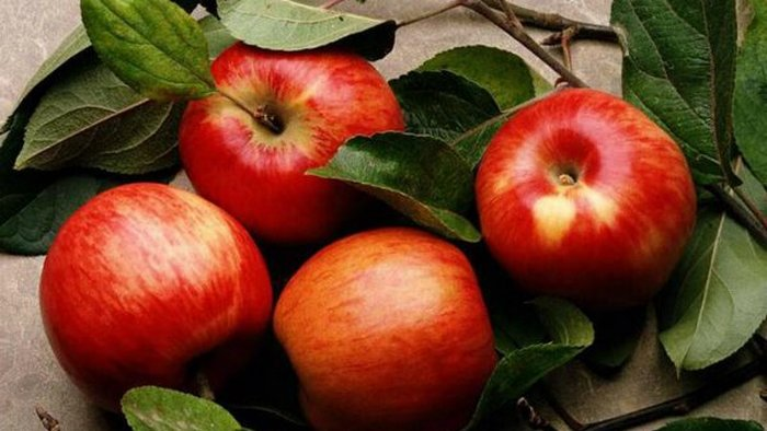 Apple against cellulite: home procedure will remove 2 cm from the thighs in just a month