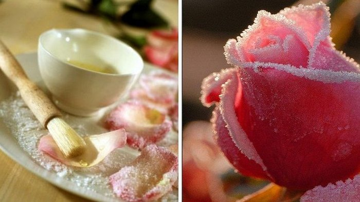 Instructions for making candied flowers