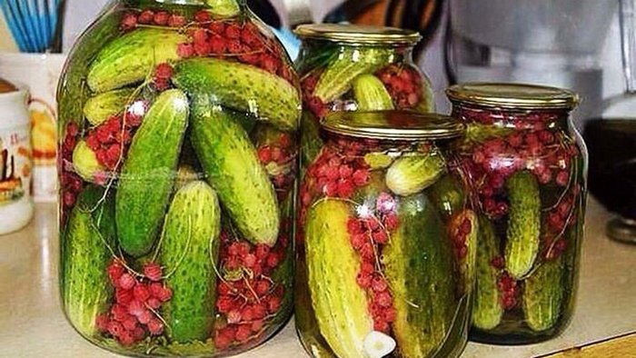 Recipe for pickled cucumbers with red currants
