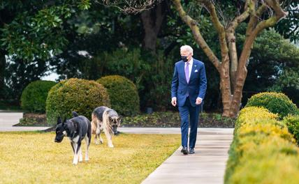 Photo: US President Joe Biden for a walk with his dogs
