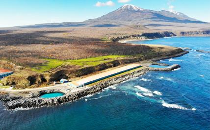Is Japan ready to fight for the Kuril Islands?